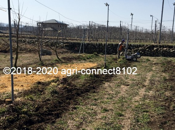 f:id:agri-connect:20200328215436j:plain
