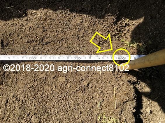 f:id:agri-connect:20200328215827j:plain