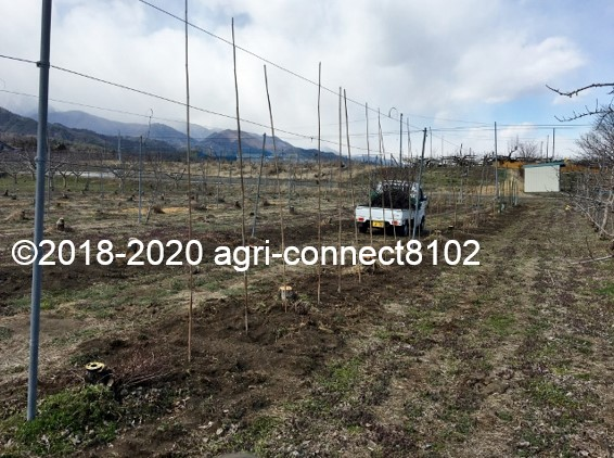 f:id:agri-connect:20200328220639j:plain