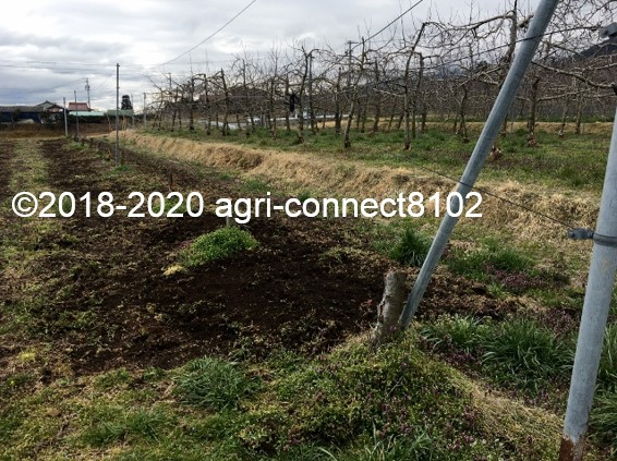 f:id:agri-connect:20200407215205j:plain