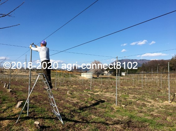 f:id:agri-connect:20200412213010j:plain