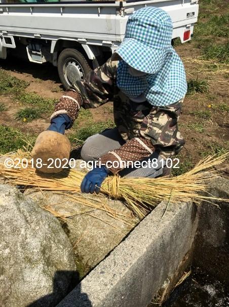 f:id:agri-connect:20200414225733j:plain