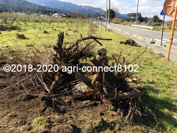 f:id:agri-connect:20200427223305j:plain