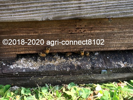 f:id:agri-connect:20200428230907j:plain