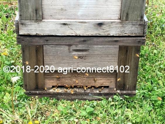f:id:agri-connect:20200428231415j:plain