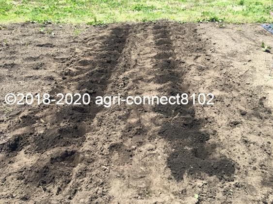 f:id:agri-connect:20200526231947j:plain