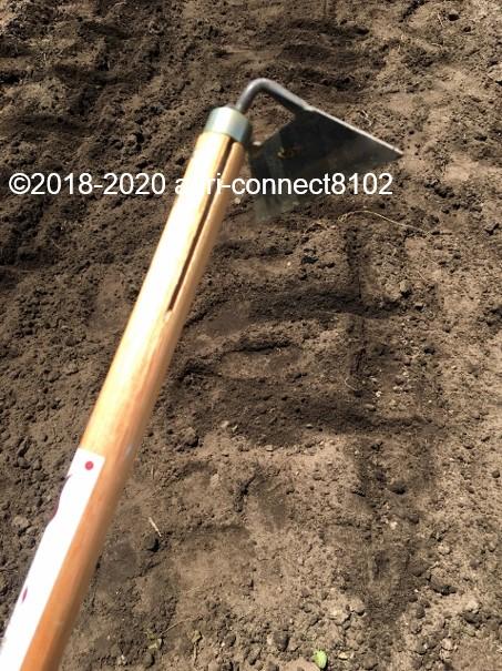 f:id:agri-connect:20200526232020j:plain