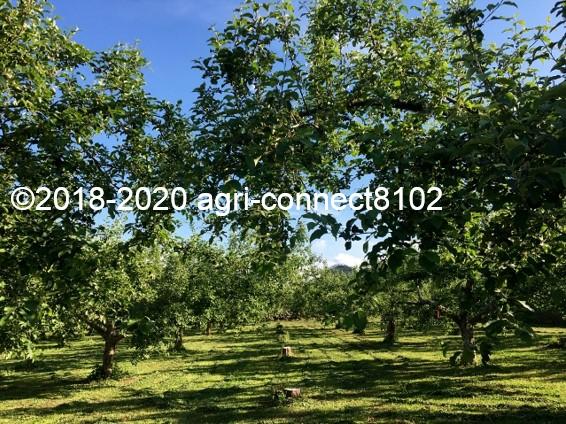 f:id:agri-connect:20200611232043j:plain
