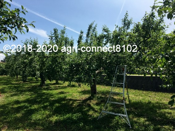 f:id:agri-connect:20200611232115j:plain