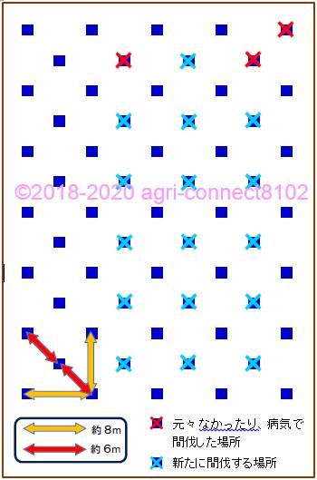 f:id:agri-connect:20200612095024j:plain
