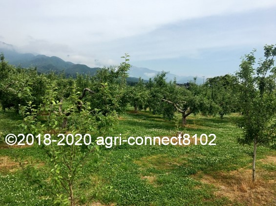 f:id:agri-connect:20200619214732j:plain