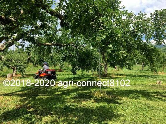 f:id:agri-connect:20200619221650j:plain