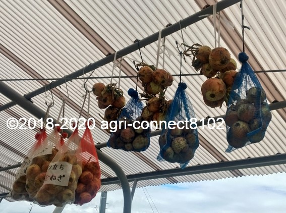 f:id:agri-connect:20200624223822j:plain