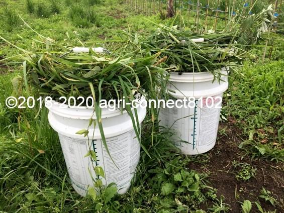 f:id:agri-connect:20200707200540j:plain