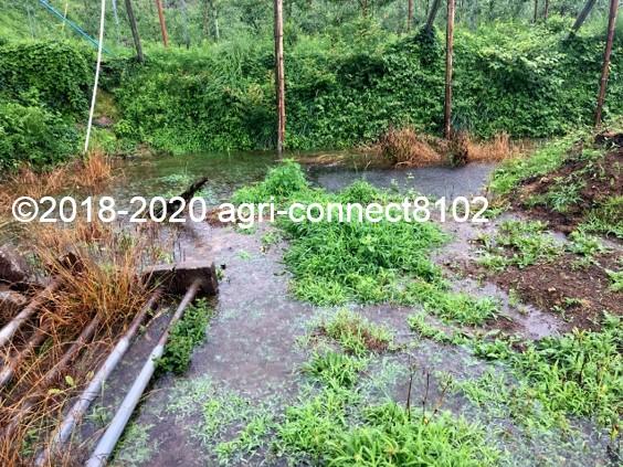 f:id:agri-connect:20200710110118j:plain