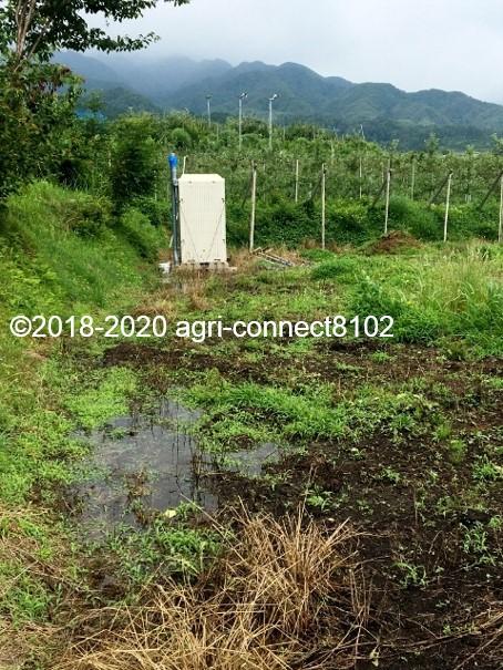 f:id:agri-connect:20200710110313j:plain