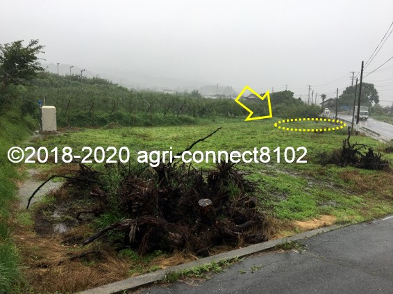 f:id:agri-connect:20200710110949j:plain