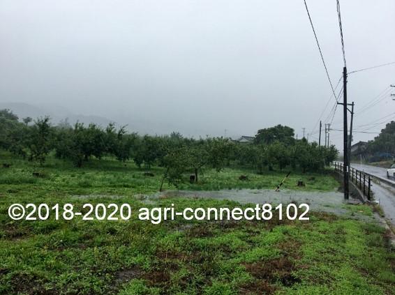 f:id:agri-connect:20200710111101j:plain