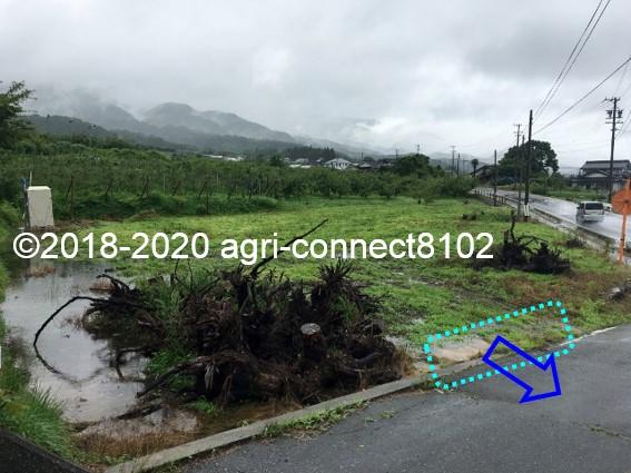 f:id:agri-connect:20200710112750j:plain