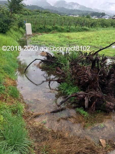 f:id:agri-connect:20200710113044j:plain