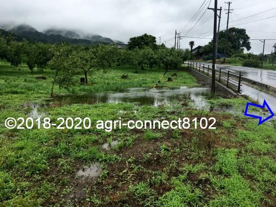 f:id:agri-connect:20200710113419j:plain