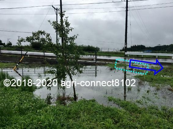 f:id:agri-connect:20200710113423j:plain