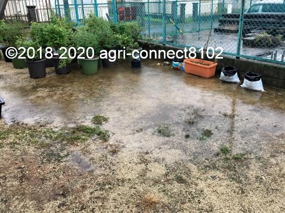f:id:agri-connect:20200710114040j:plain