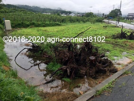 f:id:agri-connect:20200710114229j:plain
