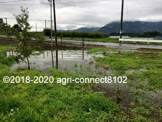 f:id:agri-connect:20200710114310j:plain