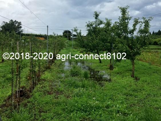 f:id:agri-connect:20200710124202j:plain