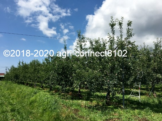 f:id:agri-connect:20200716224138j:plain