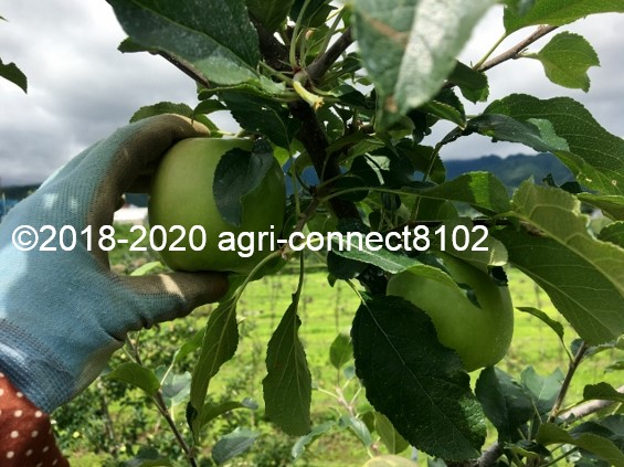 f:id:agri-connect:20200716225659j:plain