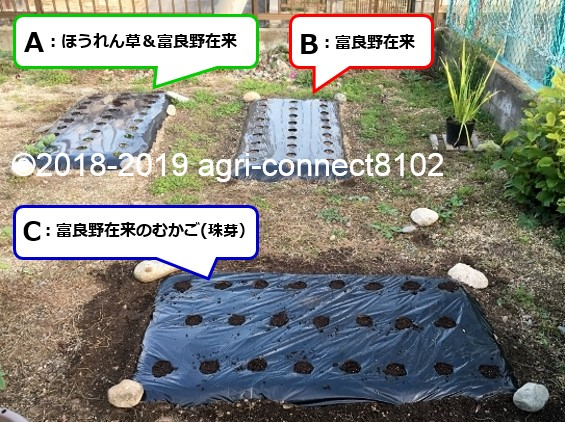 f:id:agri-connect:20200722214531j:plain