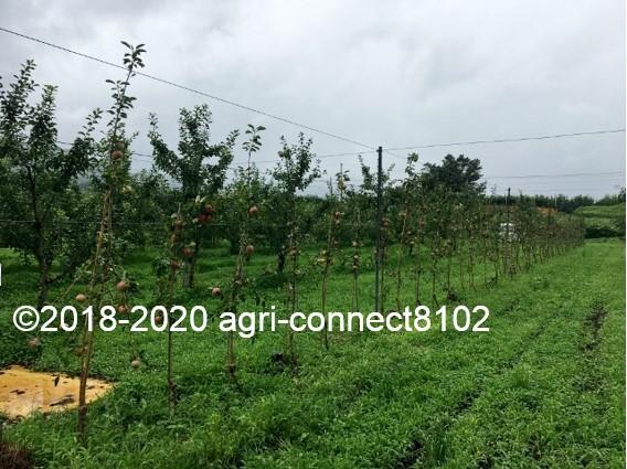 f:id:agri-connect:20200808211627j:plain