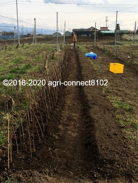 f:id:agri-connect:20200809222453j:plain