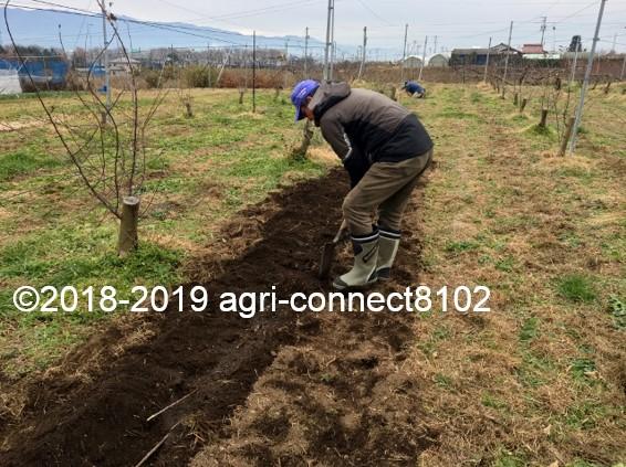 f:id:agri-connect:20200809223342j:plain