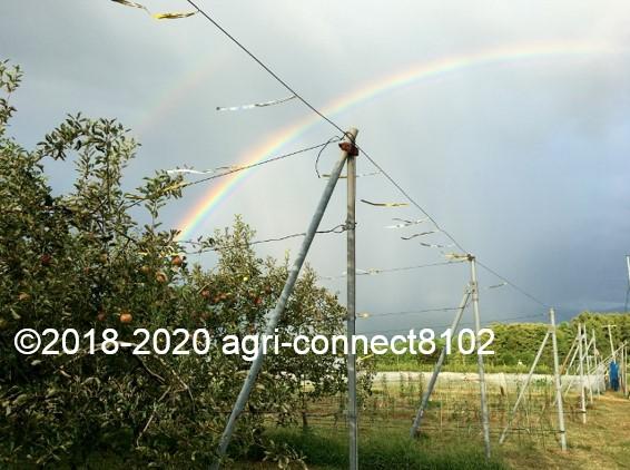 f:id:agri-connect:20200904232735j:plain