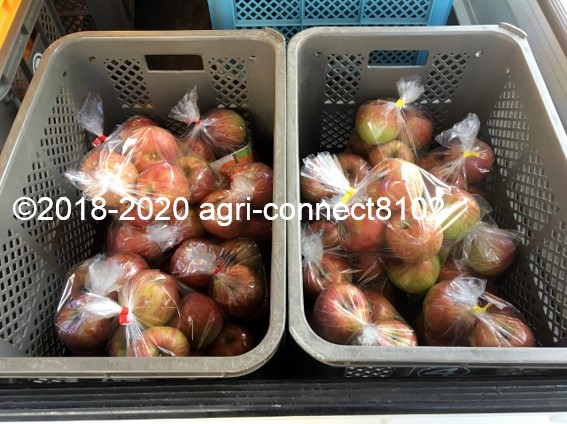f:id:agri-connect:20200904233443j:plain