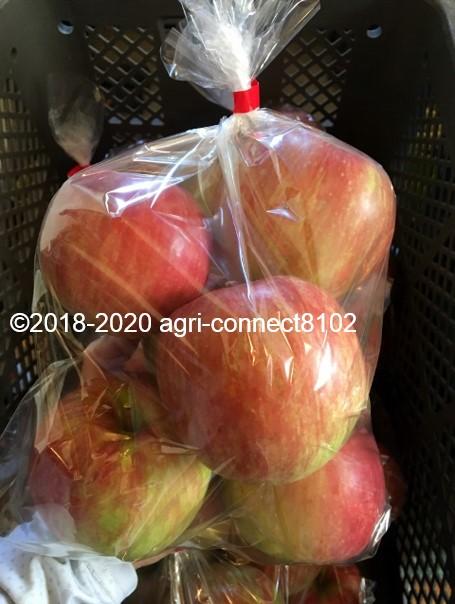 f:id:agri-connect:20200904233446j:plain
