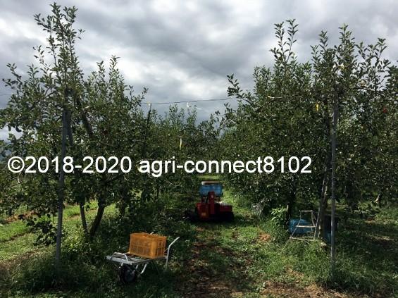 f:id:agri-connect:20200914233325j:plain