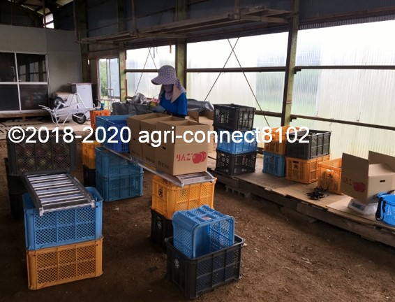 f:id:agri-connect:20200914233540j:plain