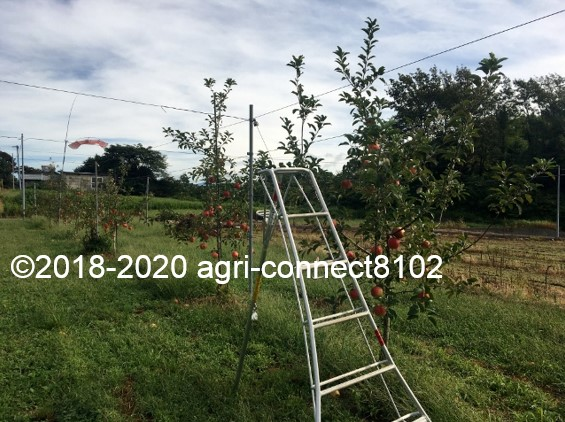 f:id:agri-connect:20200918212109j:plain