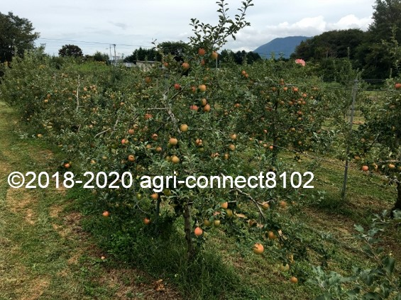 f:id:agri-connect:20200926235517j:plain