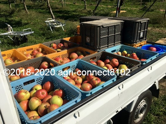 f:id:agri-connect:20201018235451j:plain