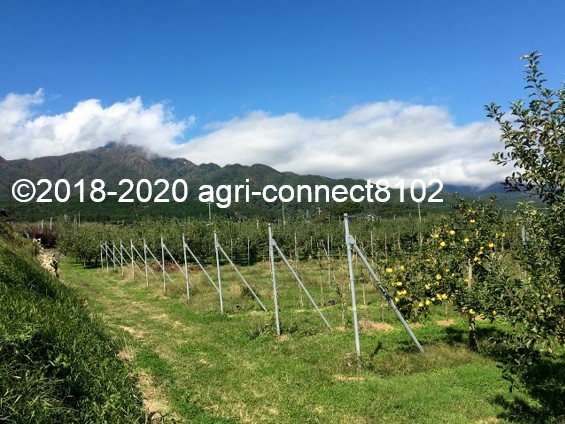 f:id:agri-connect:20201018235516j:plain
