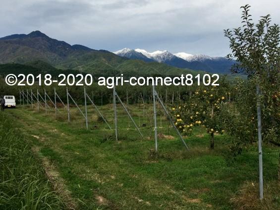 f:id:agri-connect:20201019002806j:plain