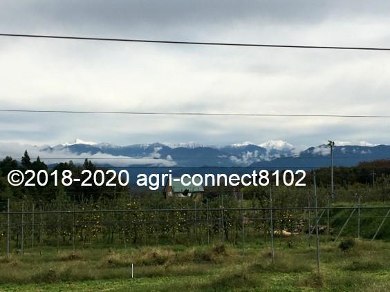 f:id:agri-connect:20201019003052j:plain