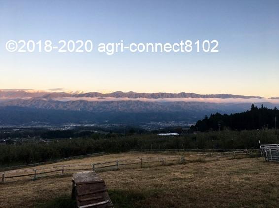 f:id:agri-connect:20201019003934j:plain