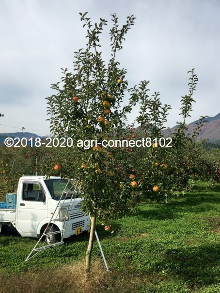 f:id:agri-connect:20201102233225j:plain