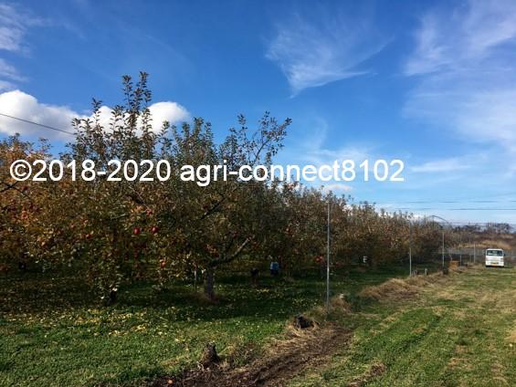 f:id:agri-connect:20201127232338j:plain